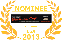 photography master cup