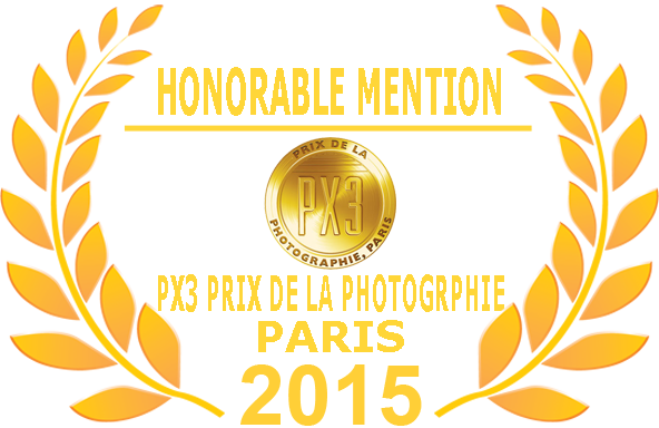 PX3 Honorable Mention